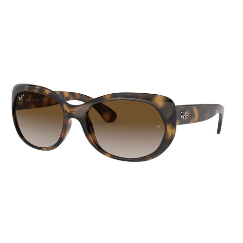 Ray-Ban RB4325 tortoise Sunglasses
